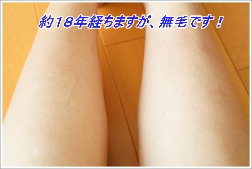 tebukuro 045-1.JPG